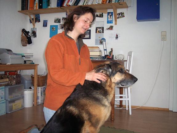 chiropraktik-hunde1