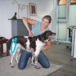 chiropraktik-hunde4